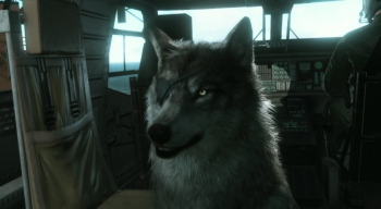 New MGSV screenshots from TGS 2014 reveal Diamond Dog, Big Boss's one-eyed wolf buddy!